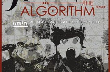 HACKTIVIST/ THE ALGORITHM В VOLTA