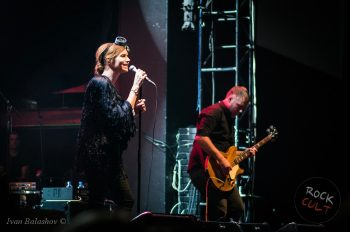 The Cardigans (6)