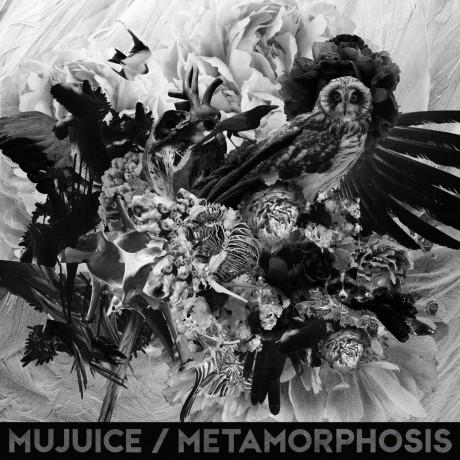 Mujuice – Metamorphosis (2014)