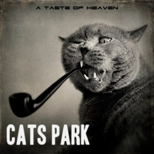 Cats Park - A Taste of heaven (2014) рецензия