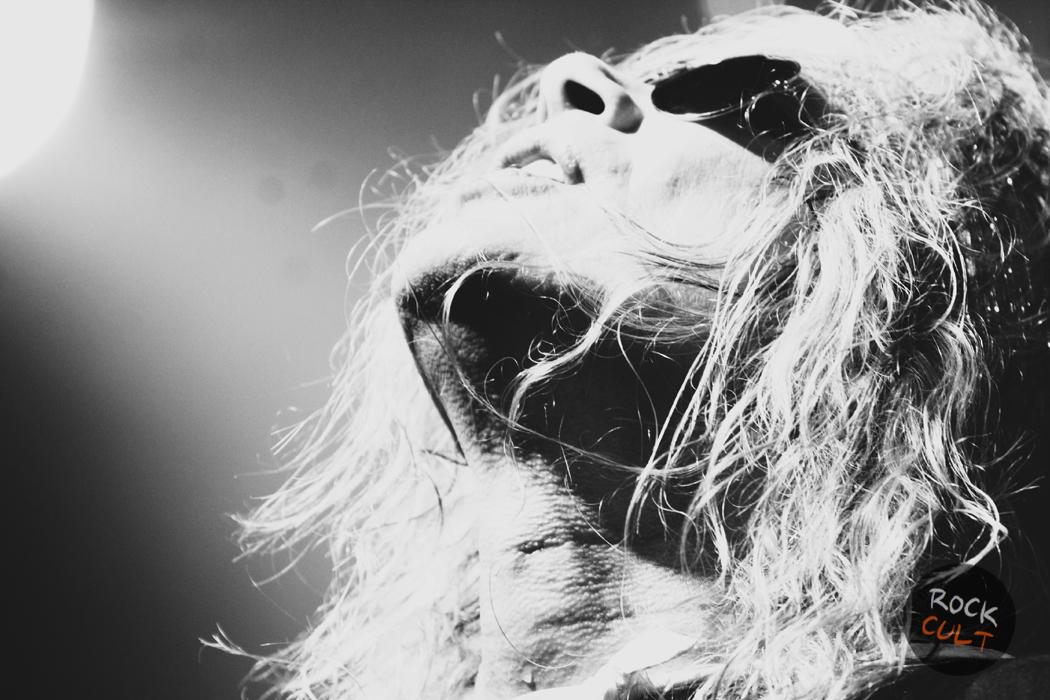 лучшие рок-фото Мария Поспелова Steel Panther