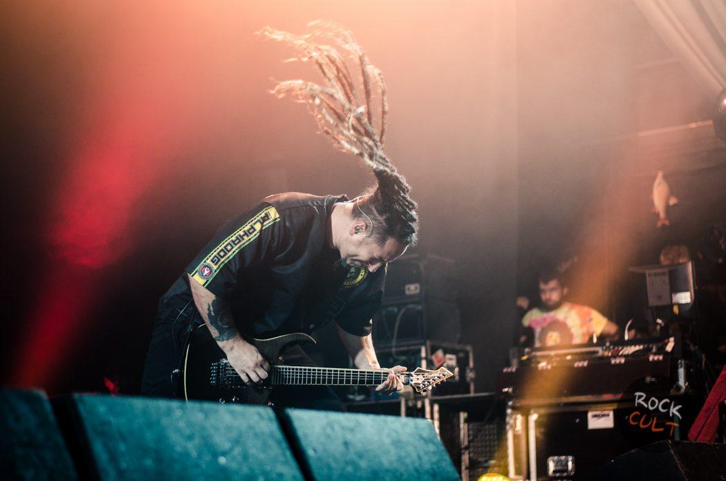 Five Finger Death Punch (37)