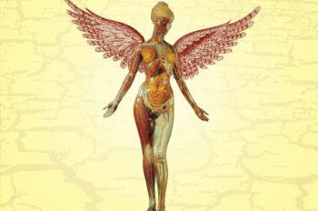 nirvana in utero обложка