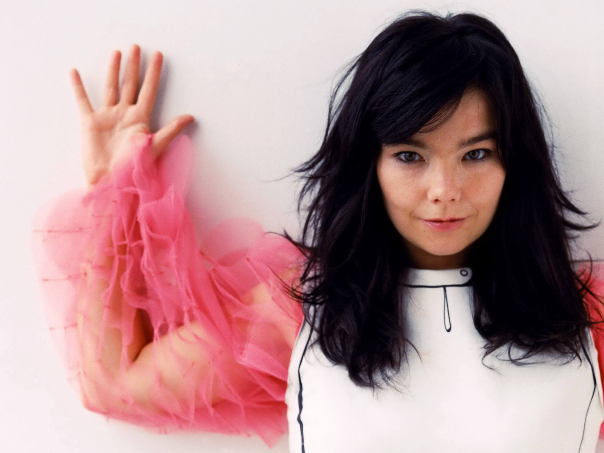 bjork-asks-to-sign-a-petition
