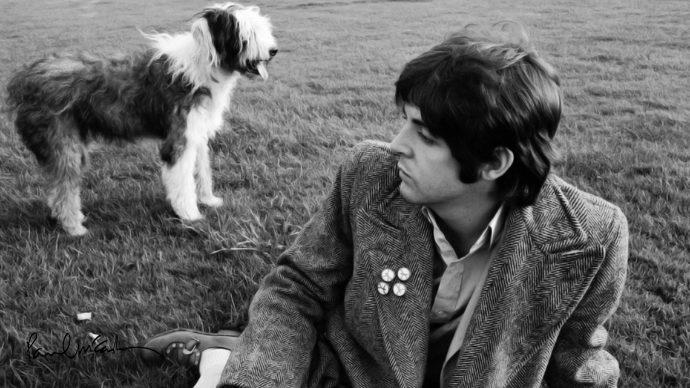 10 рок-музыкантов и их собак фото