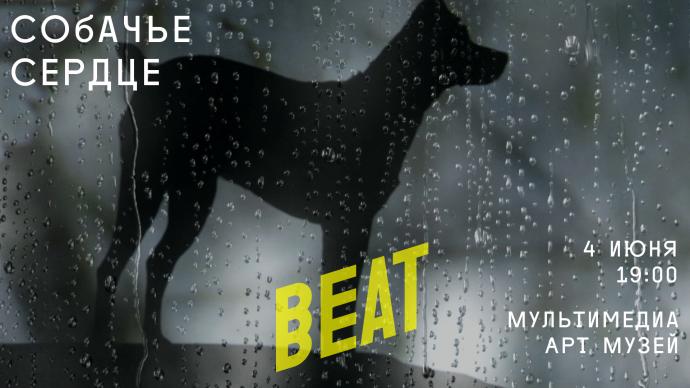 Beat_2016_slaider-11