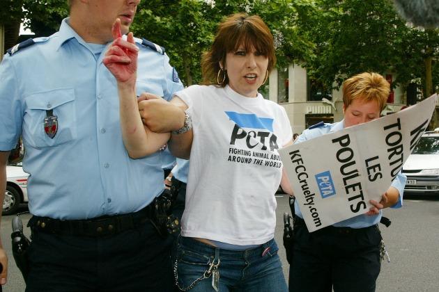 музыканты - защитники животных Крисси Хайнд арест пикет KFC в Париже PETA