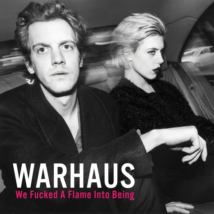 warhaus we fucked a flame into being рецензия