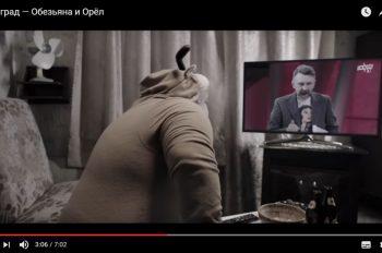 ленинград обезьяна и орел видео